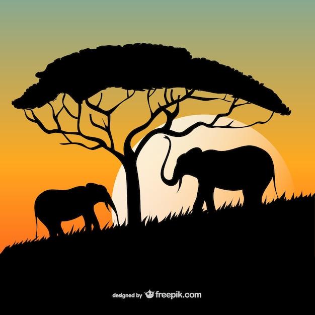 Coucher de soleil africain avec les éléphants et les silhouettes d'arbres Vecteur gratuit