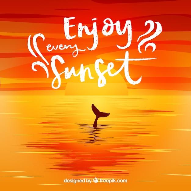 Coucher De Soleil Avec Un Dauphin En Mer Télécharger Des
