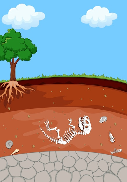 Couches de sol avec fossile de dinosaure Vecteur Premium
