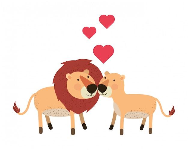 Couple de lions mignon avec des coeurs Vecteur Premium