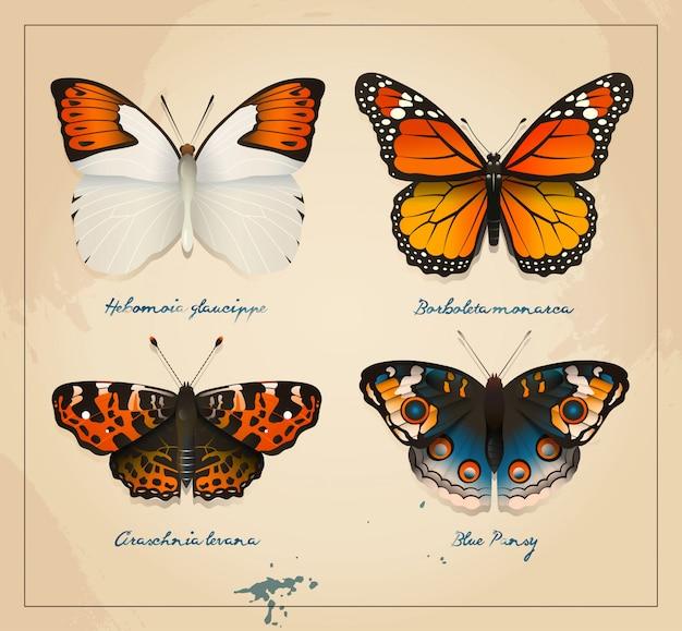 Couverture De Papillons Vintage Vecteur Premium