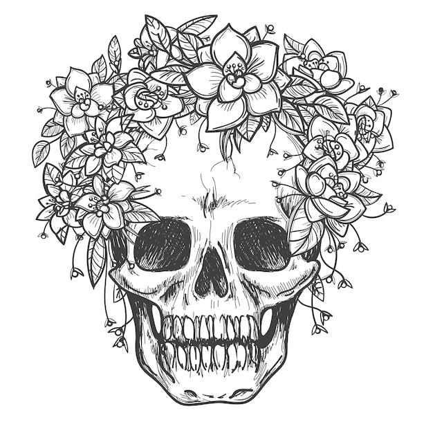 Crâne mort avec esquisse de fleurs roses Vecteur Premium