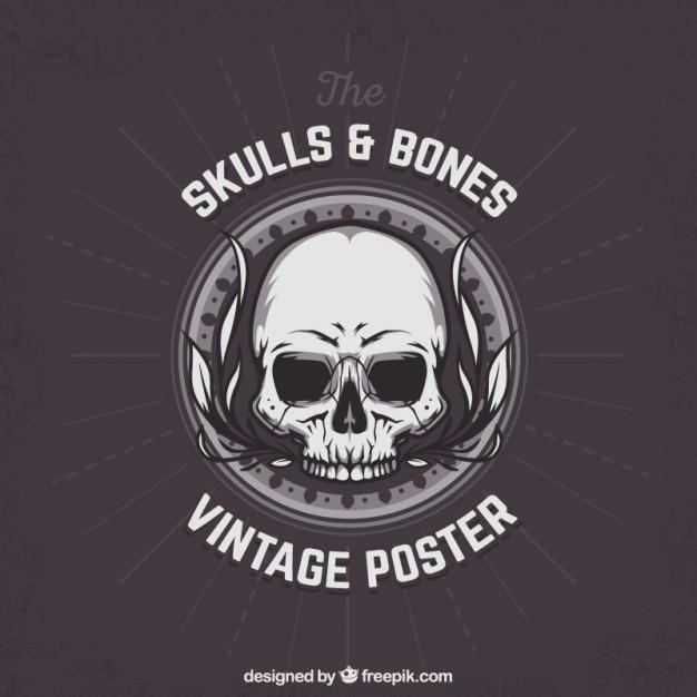 Crâne et os affiche Vecteur gratuit