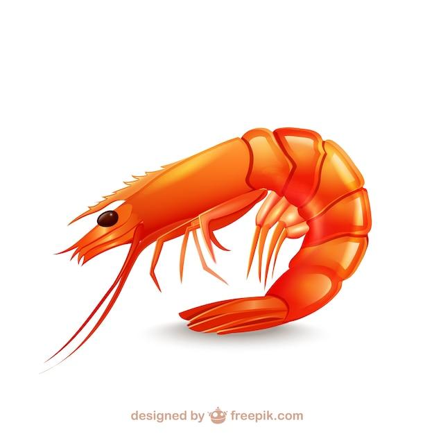 Crevettes icône Vecteur gratuit