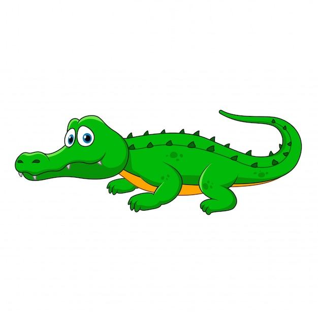 Vecteur Premium Crocodile De Dessin Anime