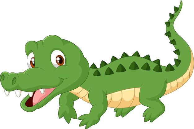 Crocodile de dessin anim t l charger des vecteurs premium - Dessin anime de crocodile ...