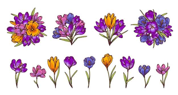Crocus Fleurs Et Bouquets Printemps Primevères Fixés Pour Carte De Voeux. Illustration De Croquis De Contour Vecteur Premium