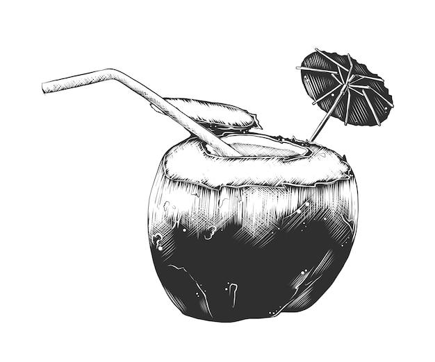 Croquis dessiné de main de cocktail de noix de coco d'été Vecteur Premium