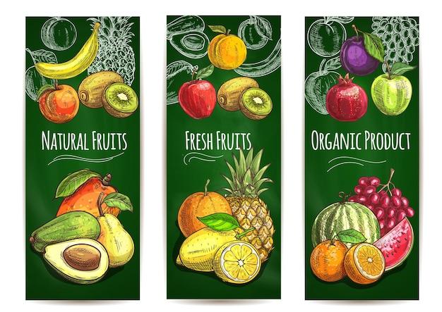 Croquis De Fruits Juteux Frais Biologiques De Poire, Orange, Avocat Vecteur Premium
