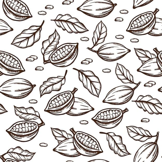 Croquis De Graines De Cacao Et De Feuilles De Conception De Couleur Marron Sur Fond Blanc Vecteur Premium