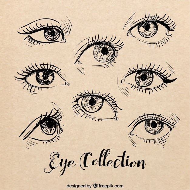 Croquis d'yeux féminins mis Vecteur gratuit