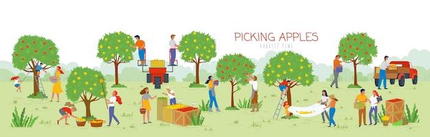 Cueillette des pommes au moment des récoltes, gens dans le jardin Vecteur Premium