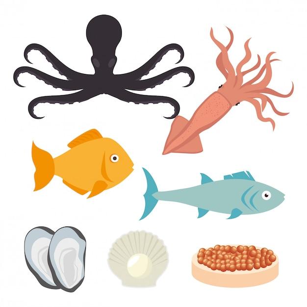 Cuisine de la mer Vecteur Premium