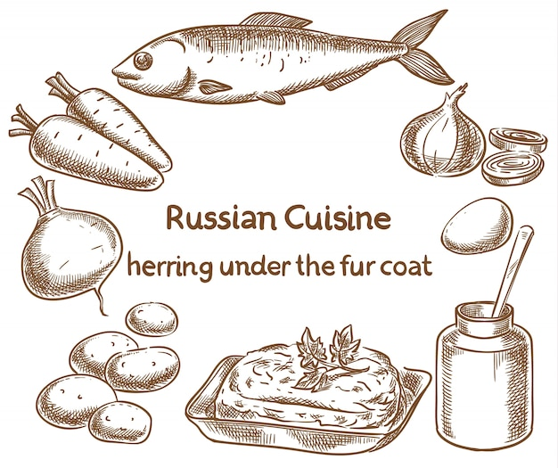 Cuisine Russe Hareng Sous Un Manteau De Fourrure, Ingrédients Vecteur Premium