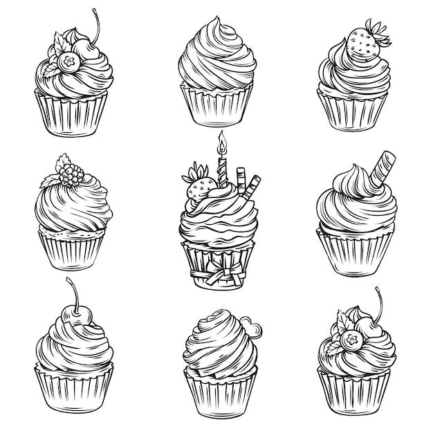 Cupcakes Dessinés à La Main Vecteur Premium