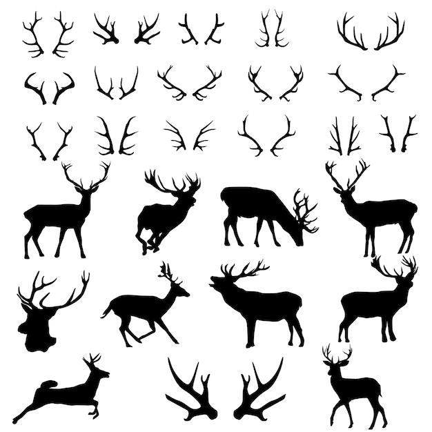 Deer antlers forêt animnal silhouette clip art Vecteur Premium