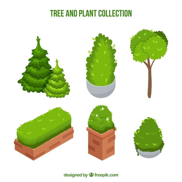 Définir des arbres et des plantes Vecteur gratuit