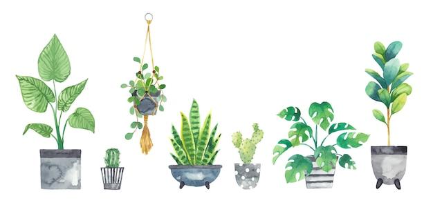 Définir Les Plantes D'intérieur Dans Des Pots Peints à L'aquarelle Vecteur Premium