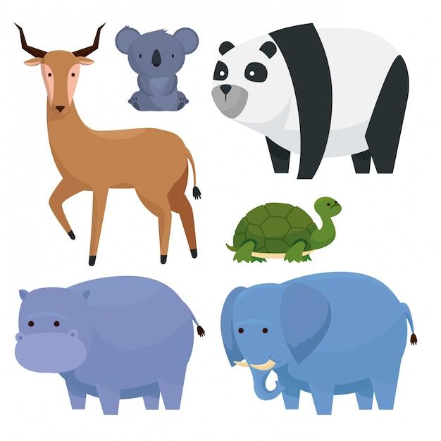 Définir une réserve d'animaux sauvages pour la faune Vecteur gratuit