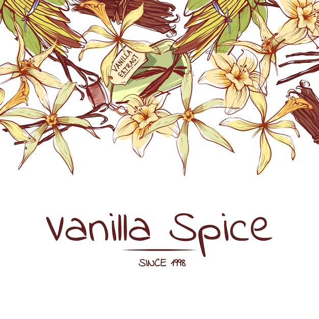 Dépliant épice vanille pour société de publicité Vecteur Premium