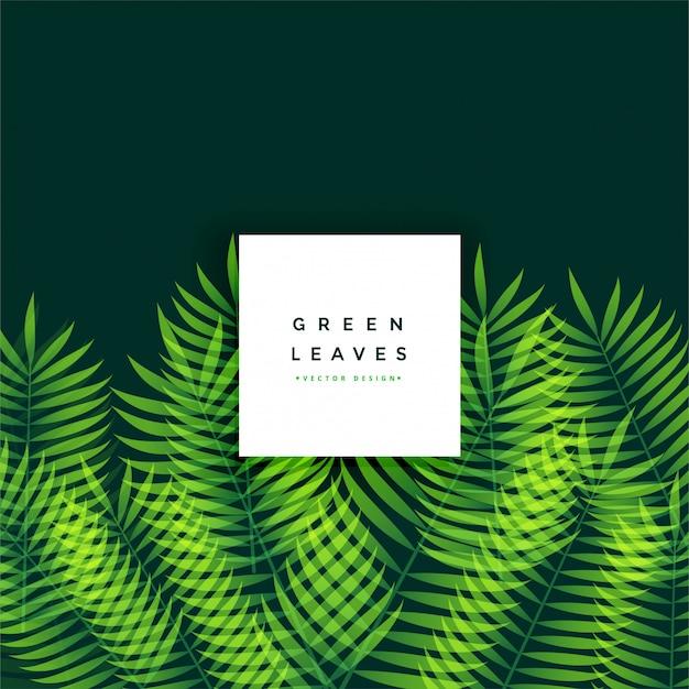 Design de fond impressionnant de feuilles vertes Vecteur gratuit
