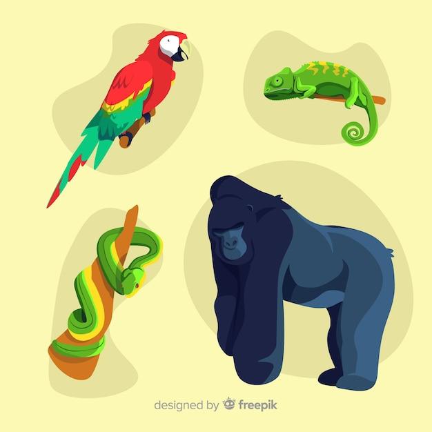 Design plat de collection d'animaux tropicaux Vecteur gratuit