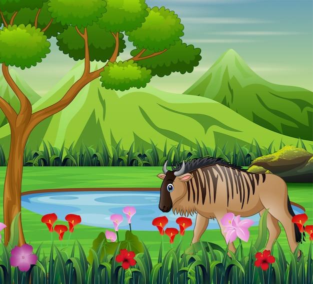 Dessin animalier de bison dans la belle nature Vecteur Premium