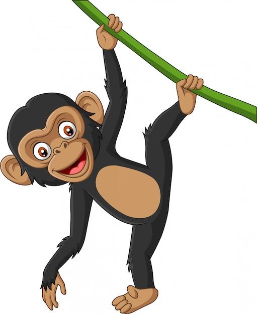 Dessin animé bébé chimpanzé suspendu à une branche d'arbre Vecteur Premium