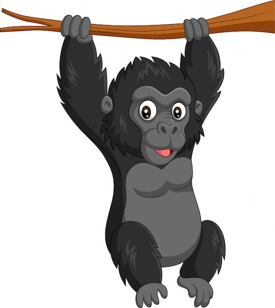 Dessin animé bébé gorille suspendu dans une branche d'arbre Vecteur Premium