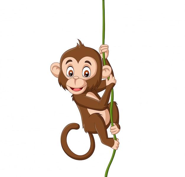 Dessin animé bébé singe suspendu à une branche d'arbre Vecteur Premium
