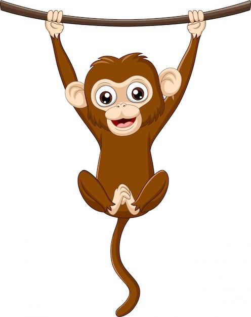 Dessin animé bébé singe suspendu à une branche de bois Vecteur Premium