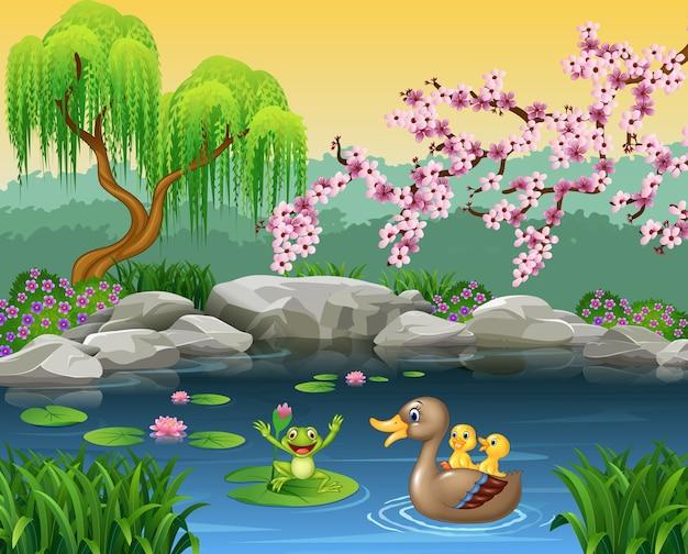 Dessin animé drôle mère canard avec grenouille sur l'eau de lys Vecteur Premium