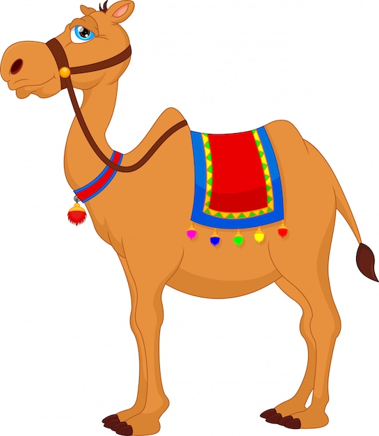 Dessin animé mignon de chameau Vecteur Premium