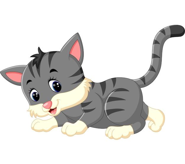 Dessin animé mignon de chat Vecteur Premium