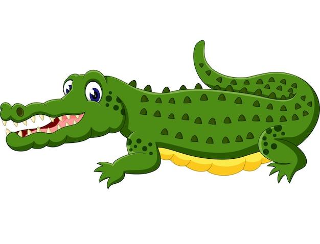 Dessin anim mignon de crocodile t l charger des vecteurs premium - Dessin anime de crocodile ...