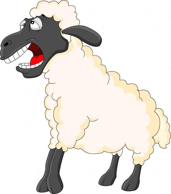 Dessin animé mignon de mouton Vecteur Premium