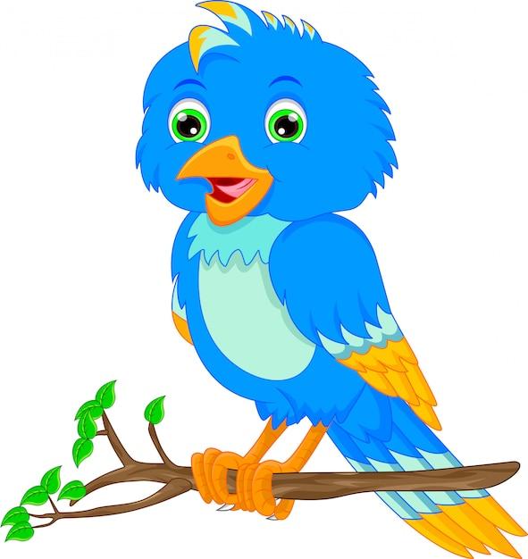 Dessin animé mignon d'oiseau Vecteur Premium