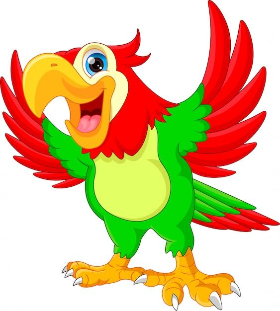 Dessin animé mignon de perroquet   Télécharger des ...