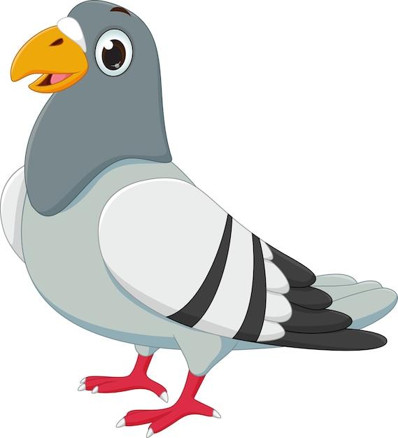 Dessin Animé Mignon De Pigeon Télécharger Des Vecteurs Premium
