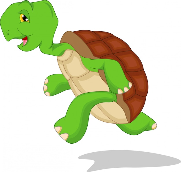 Dessin animé mignon de tortue verte Vecteur Premium