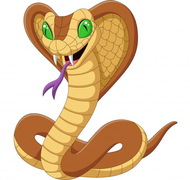 Dessin animé roi serpent cobra isolé Vecteur Premium