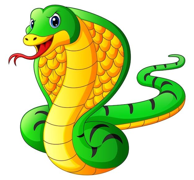 Dessin Cobra dessin animé serpent mascotte cobra   télécharger des vecteurs premium