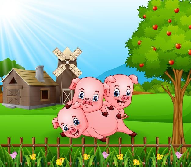 Dessin anim trois petits cochons jouant dans le fond de la ferme t l charger des vecteurs premium - Dessin anime les 3 petit cochons ...