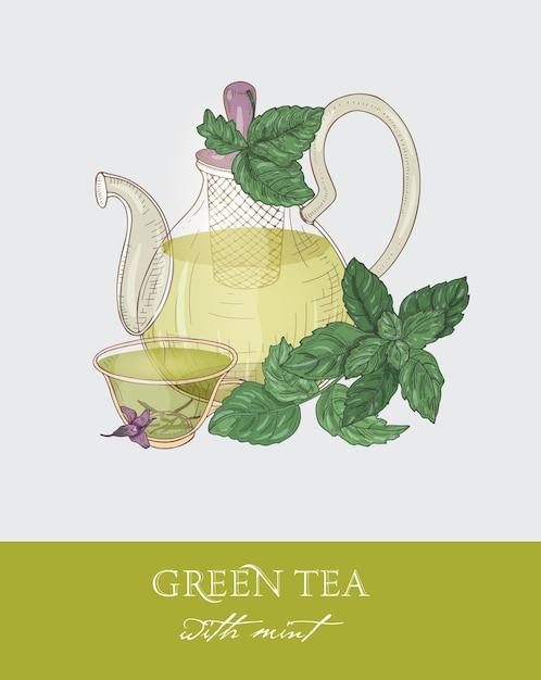 Dessin Coloré De Théière En Verre Avec Passoire, Tasse De Thé Vert, Feuilles De Menthe Bio Et Fleurs Sur Gris. Vecteur Premium
