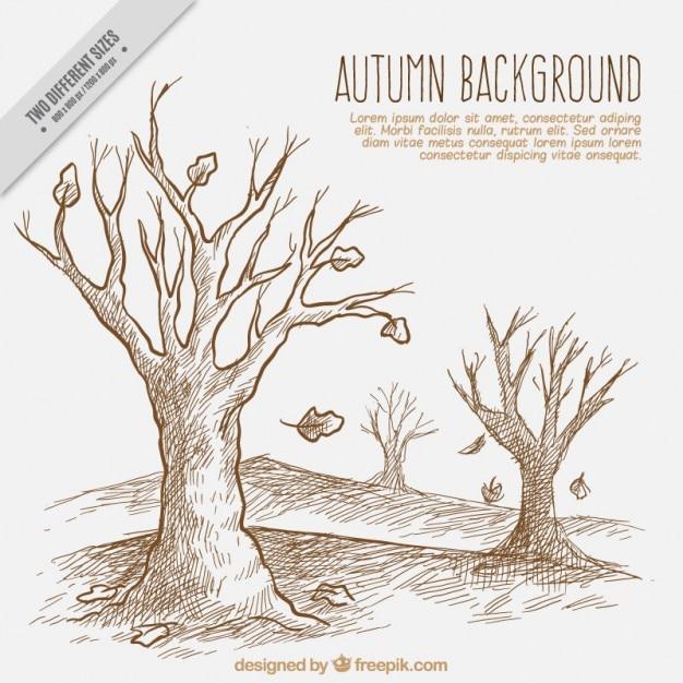 Dessin d 39 un paysage d 39 automne t l charger des vecteurs gratuitement - Coloriage paysage automne ...