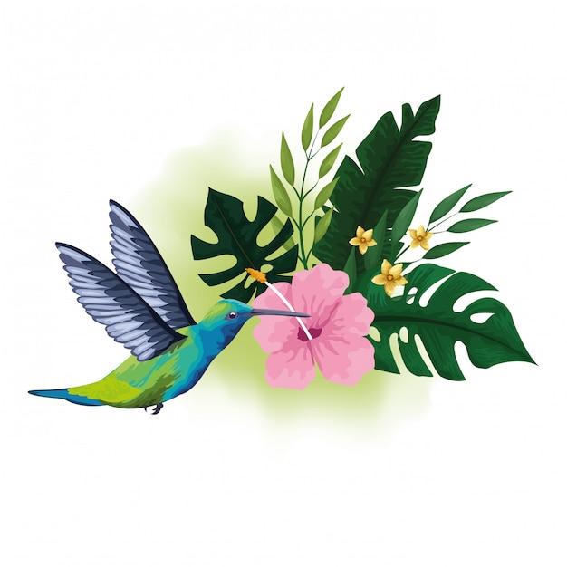 Dessin Doiseaux Exotiques Et De Fleurs Tropicales
