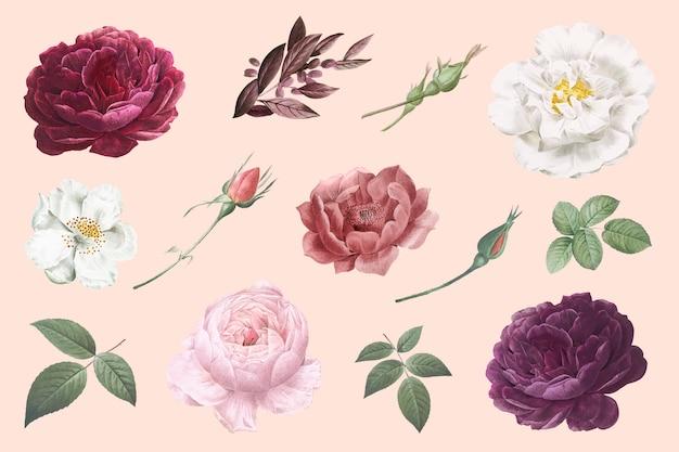 Dessins De Fleurs Vintage Vecteur gratuit