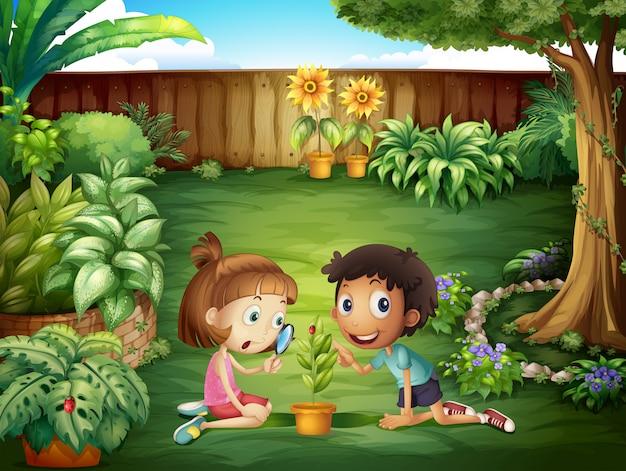 Deux adorables enfants qui étudient la coccinelle dans la cour Vecteur gratuit