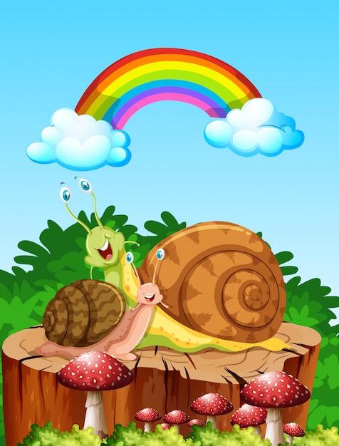 Deux Escargots Vivant Dans La Scène Du Jardin Pendant La Journée Avec Arc-en-ciel Vecteur gratuit