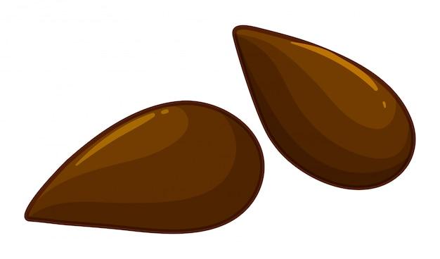 Deux Graines De Pomme Vecteur gratuit